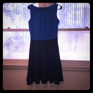 The Limited A Line Dress